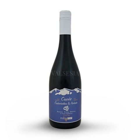 Cuvée Blueberry & Aronia, brand fruit wine, 0.75 l